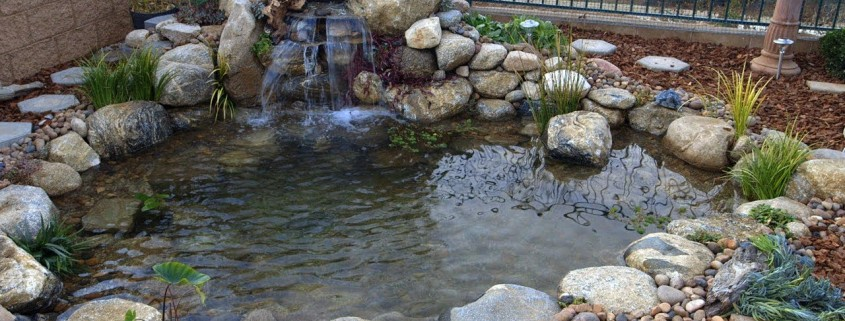 beautiful backyard simple steps for creating beautiful backyard ponds