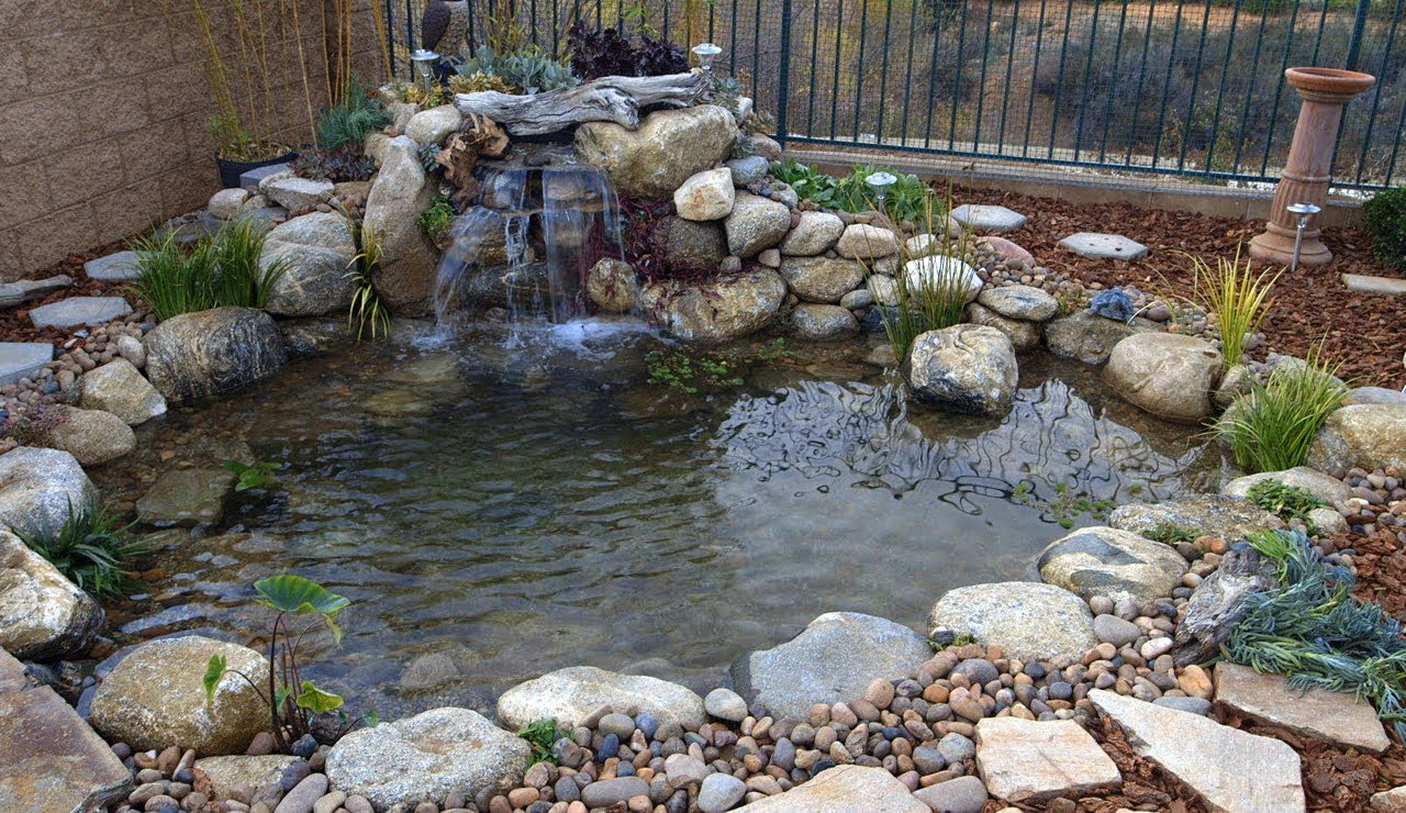 Simple steps for creating beautiful backyard ponds for How to build a small koi pond
